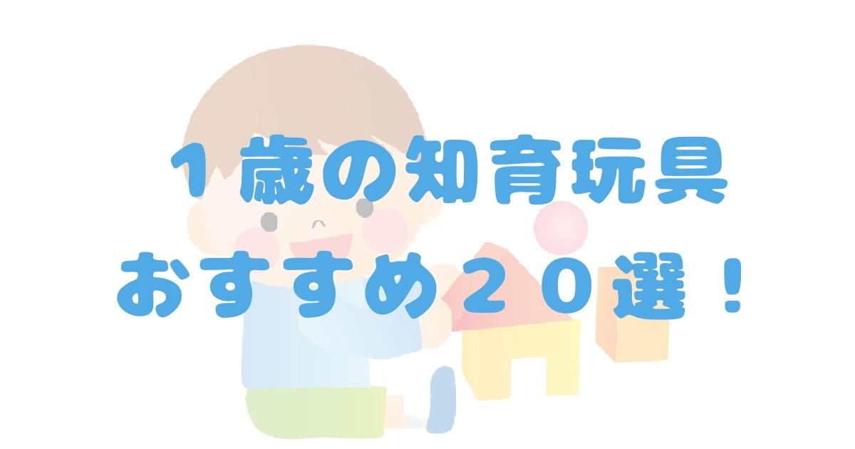 1歳の知育玩具おすすめ20選!